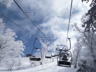 snowhiteの写真・画像素材[1535519]
