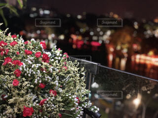 ベトナムのレストランから見える風景の写真・画像素材[1536774]