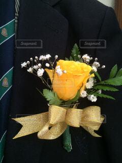 テーブルの上の花の花瓶の写真・画像素材[1559495]