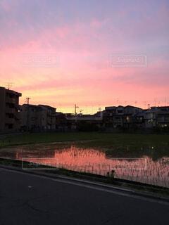 街に沈む夕日の写真・画像素材[1541054]