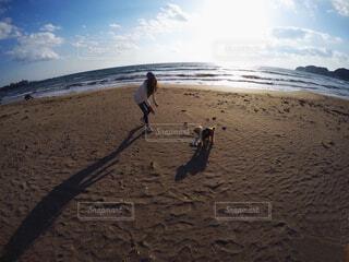 愛犬と海散歩でフリスビーの写真・画像素材[1541208]