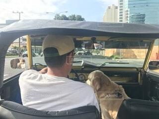 愛犬とドライブの写真・画像素材[1579036]