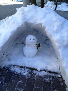 雪の朝の写真・画像素材[1546441]