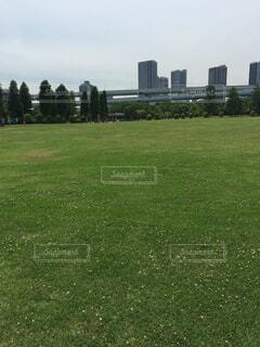 都会の公園の写真・画像素材[1551320]