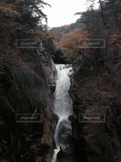 森の中の大きな滝の写真・画像素材[1539839]