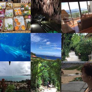 沖縄旅行の思い出の写真・画像素材[1540444]