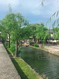 倉敷美観地区の写真・画像素材[1548441]