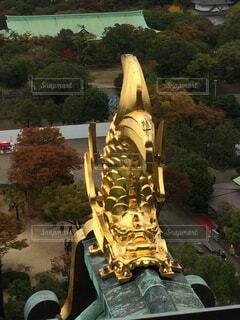 金の鯱鉾の写真・画像素材[1544620]