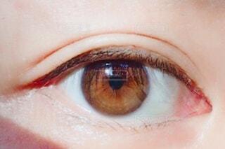 琥珀色の目の写真・画像素材[2266671]