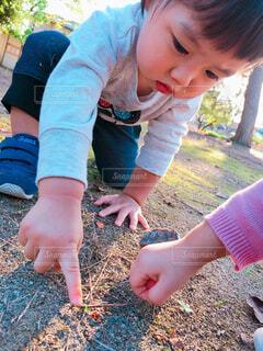 てんとう虫を発見した男の子の写真・画像素材[1545227]