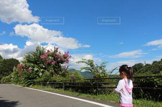 青空と女の子の写真・画像素材[1545671]