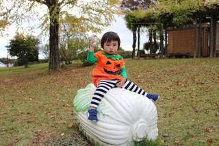 白菜のおもちゃにまたがる男の子の写真・画像素材[1560659]
