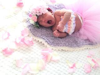 赤ちゃんの全力あくびの写真・画像素材[1571396]