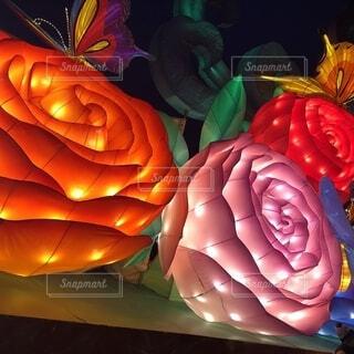 色とりどりの花のグループの写真・画像素材[1665089]