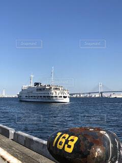快晴の大桟橋からの写真・画像素材[1558461]