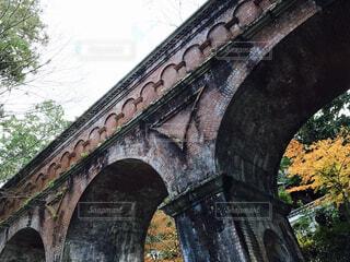 橋と紅葉の写真・画像素材[1551676]