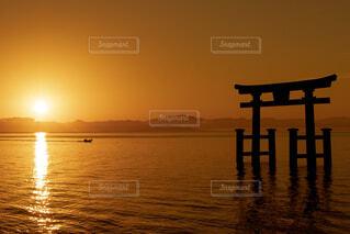 鳥居と日の出の写真・画像素材[1542521]