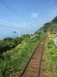 青空と海岸線を走る電車の写真・画像素材[1547002]