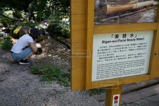 阿寺渓谷にて美顔水の効果期待の写真・画像素材[1545135]
