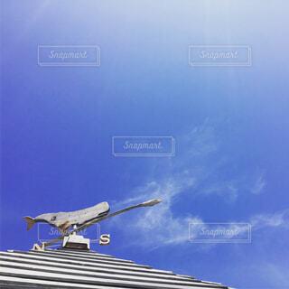 In the skyの写真・画像素材[1642625]