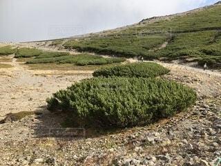 山の頂上の写真・画像素材[1545751]