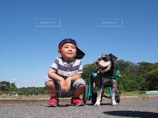 No.518064 犬