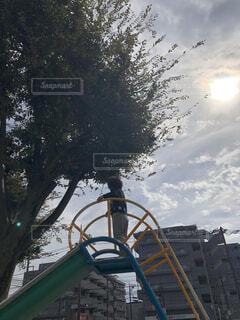 滑り台の上での写真・画像素材[1566304]