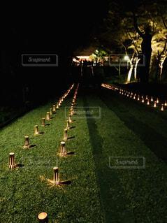 香嵐渓ライトアップの写真・画像素材[1602471]