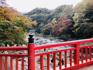 香嵐渓の写真・画像素材[1602474]