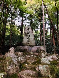 香嵐渓の写真・画像素材[1602508]