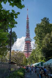 いい天気での東京タワーの写真・画像素材[1547703]