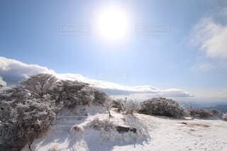 光と雪の共演の写真・画像素材[1765296]