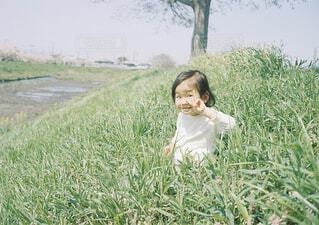 春の散歩の写真・画像素材[1549470]