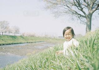 春の散歩の写真・画像素材[1549471]