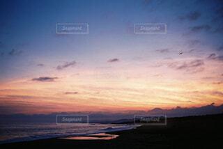 夕方の散歩の写真・画像素材[1558531]