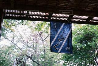 高尾山の休憩所の写真・画像素材[1558534]