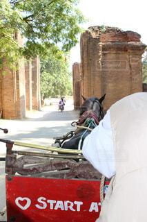 馬車で移動の写真・画像素材[1554716]