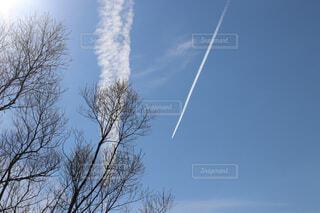 飛行機雲の写真・画像素材[2024342]