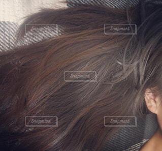 ロングヘアの写真・画像素材[2211221]