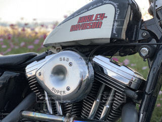 近くにバイクのアップの写真・画像素材[1552783]