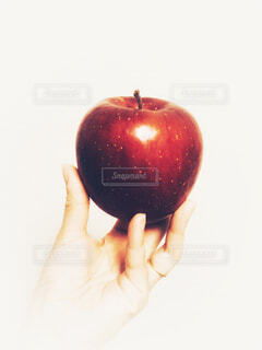 手に持った林檎の写真・画像素材[1600564]