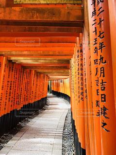 伏見稲荷大社にての写真・画像素材[1570102]