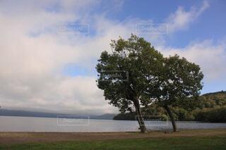 湖畔の景色の写真・画像素材[1553980]
