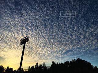 秋の空の写真・画像素材[1637253]