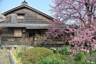 建物の前に茂みに家の写真・画像素材[1557707]