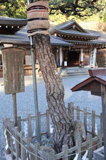 小國神社の金銀石の写真・画像素材[1737615]