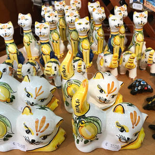 レモンの猫がいっぱいいます。の写真・画像素材[1557062]