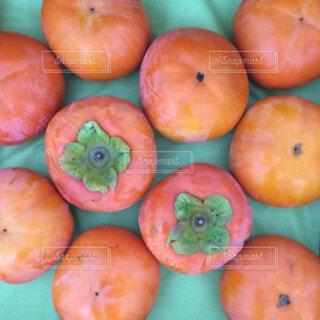 柿の写真・画像素材[28414]