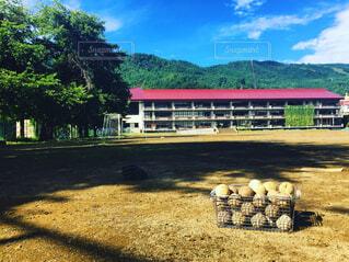 野球部練習後の校庭の写真・画像素材[1133680]