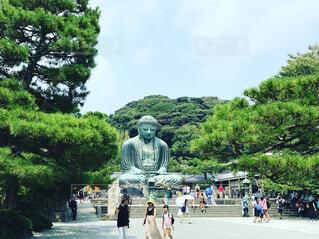鎌倉 大仏様の写真・画像素材[1557510]